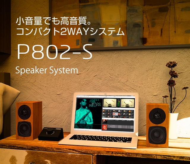 P802-S_BANNER-2