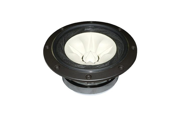 RDacoustic speaker driver Fostex FE168EΣ