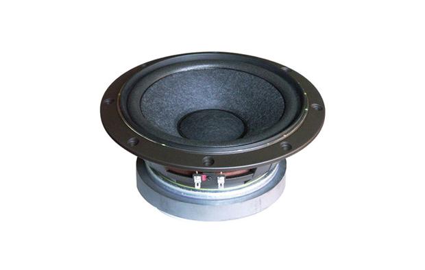 RDacoustic reproduktor Fostex FW208N