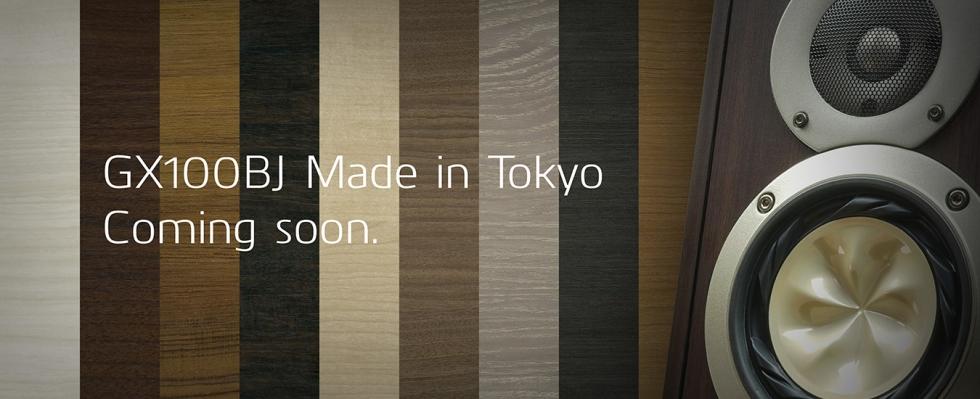 GX100BJ_image.banner