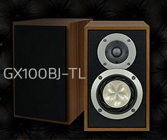 GX100BJ-TL_sam