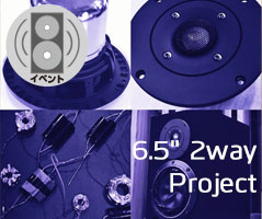 2wayproject_Banner