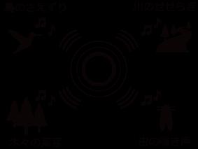 4chSP_image2